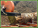 Milling timber on the Woodmizer